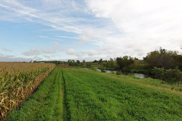 Vermillion River Vegetated Buffer