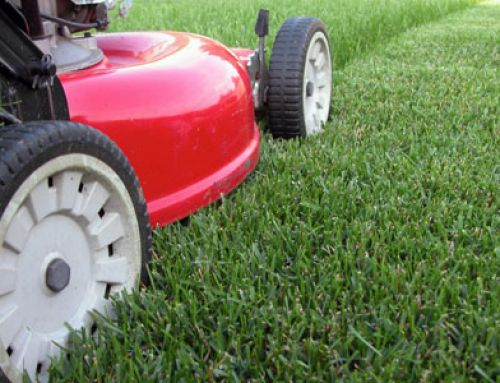 Turfgrass Maintenance Workshop – April 6, 2018
